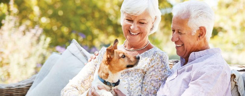 Learn the benefits of having a pet during retirement